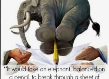 Graphene elephant