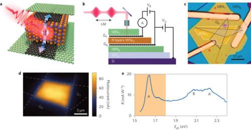 Graphene raising response of optical and photonic circuits Graphene/WSe2 (2-D material) graphene heterostructure