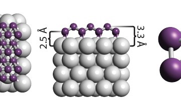 Borophene is a honeycomb of boron atoms (purple), with each hexagon capped by another boron atom