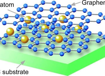 Graphene superconductivity developed by insertion of Ca atoms between two graphene layers causes the superconductivity.