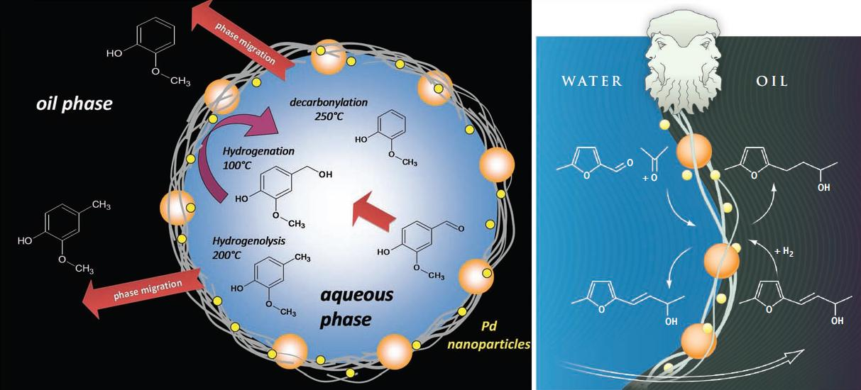 Graphene Janus nanoparticles either hydrophobic water repelling like oil or hydrophilic