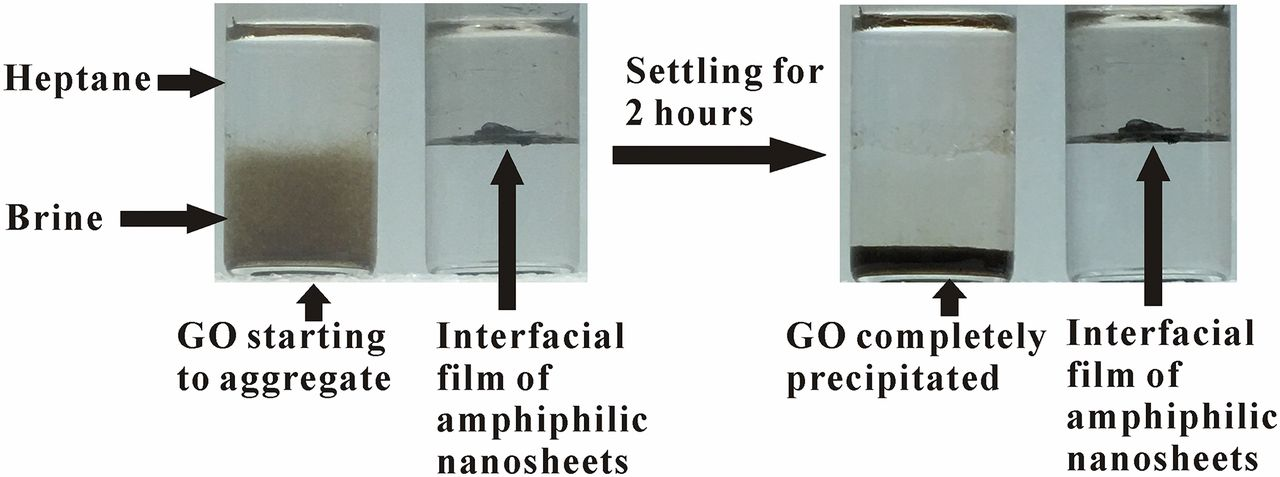 Graphene Oxide (GO) and amphiphilic nanosheets in the heptane/brine system.
