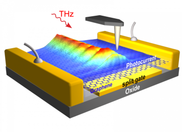 On-chip observation of THz graphene plasmons opens new horizons