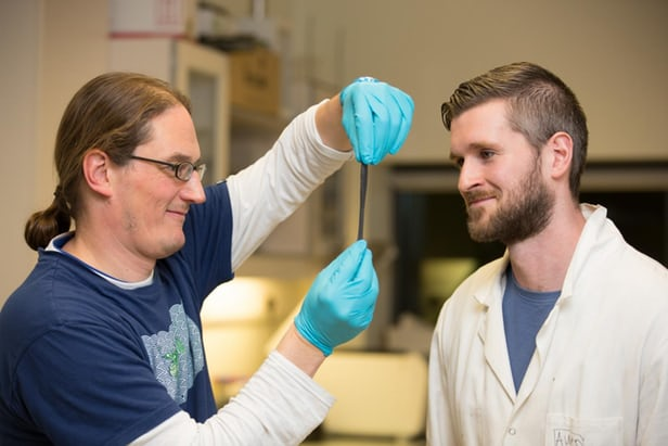 Graphene Silly Putty makes revolution in nanotech