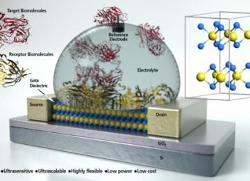 Graphene transistor builds multi-use biosensor