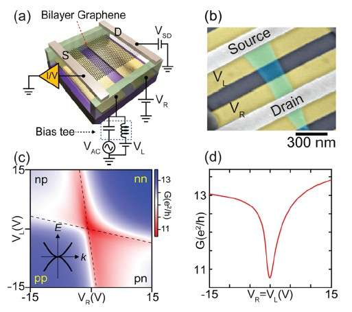How graphene photodetectors works