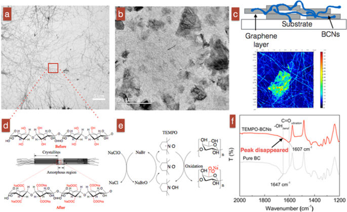 A structure of the graphene-based sensor and Chemical reaction on BCNs