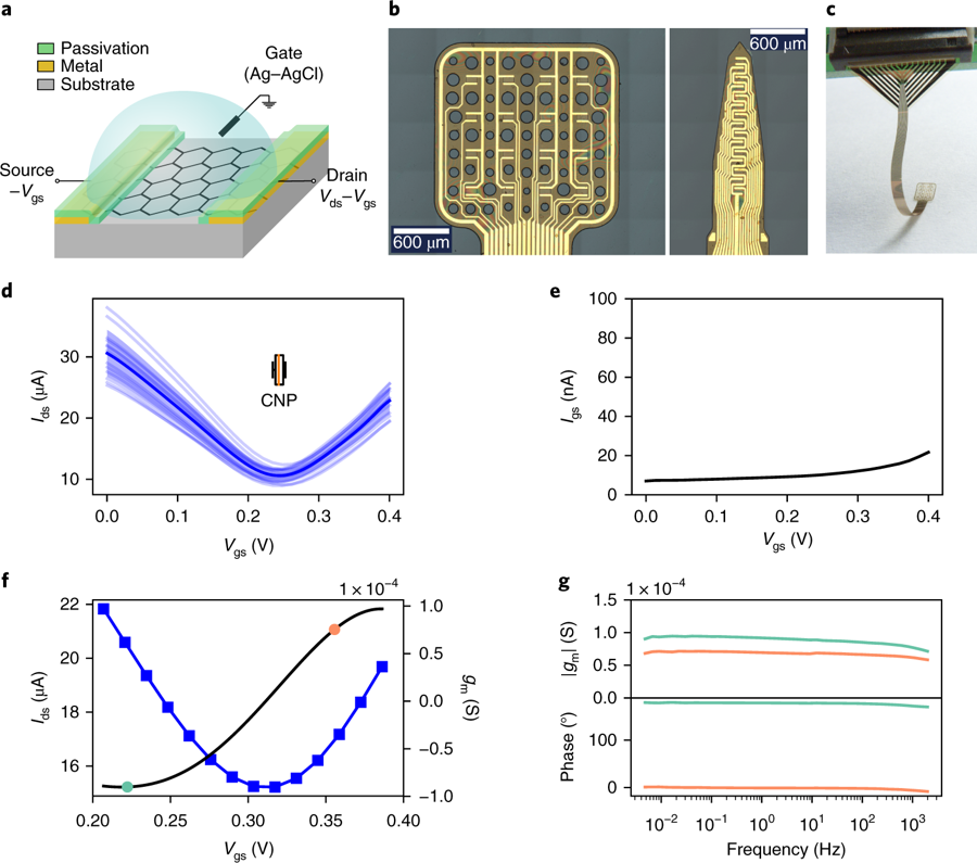 Schematic of Graphene-based implant appear a graphene transistor polarized in common gate mode. b, Optical microscope images of the active area of a 4×4 gSGFET array and a 15-channel intracortical array.